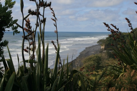 Mokau Beach North