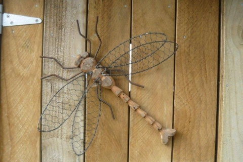 Turere Dragon Fly